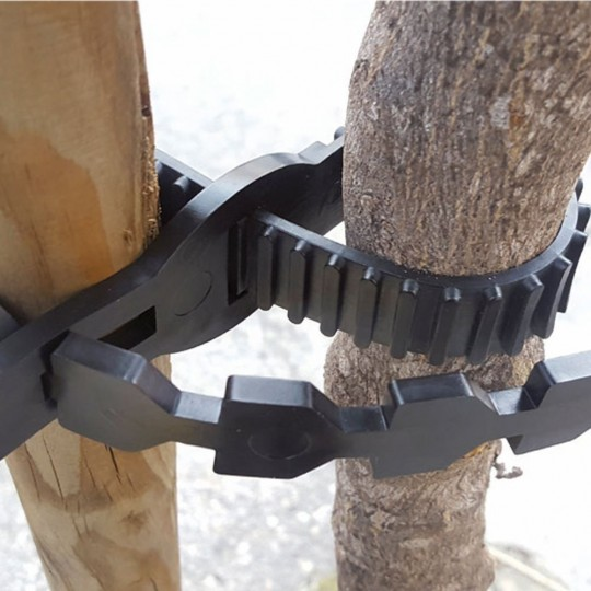 Correa Sujeción Dentada Tree Lock Tape